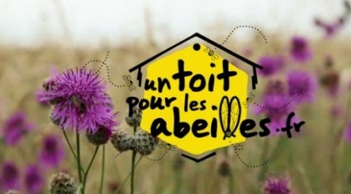 un-toit-pour-les-abeilles-e1358081963764.jpg