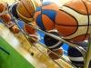 P1290677 [basket 2017]