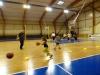 P1290701 [basket 2017]