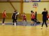 P1290744 [basket 2017]